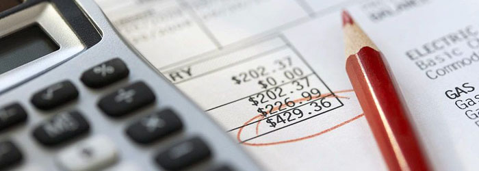 Положение (стандарт) бухгалтерского учета 13 «Финансовые инструменты»